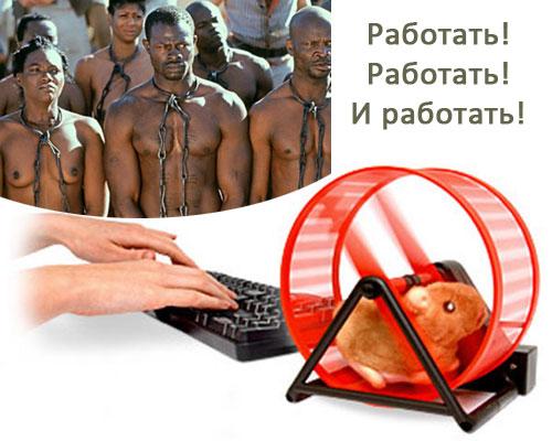 Хомячки в интернет заработке