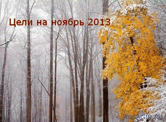 Цели на ноябрь 2013